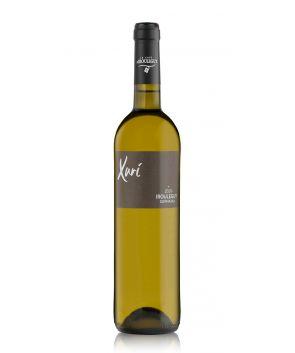 Vin blanc Xuri Irouleguy AOC 50cl  | Maison Ederki